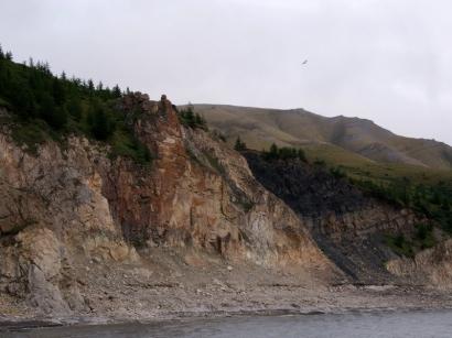 Правый берег Лены вблизи острова Тит-Ары. Лиственница Каяндера на северном пределе своего распространения