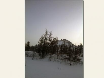 Лес и горы
