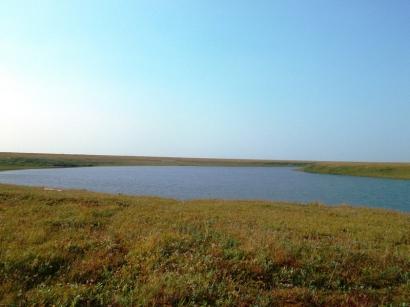Озеро на участке