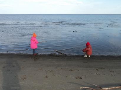 На берегу моря