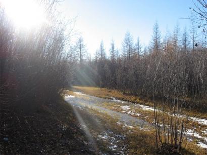 Осенняя дорога_1