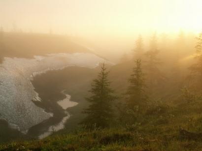 Река Яна. Туман