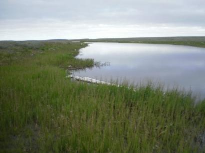 Озеро на острове Самойловский