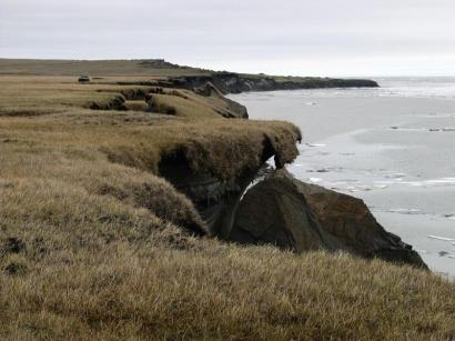 Остров Большой Ляховский, южный берег