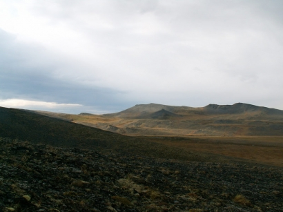 Горная тундра у ручья Каньон