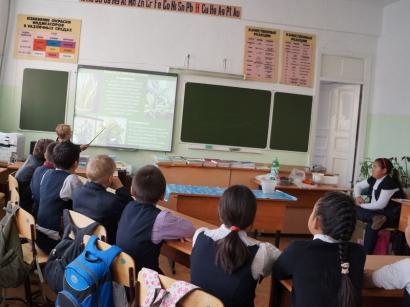 Экологический урок в ТСОШ №1_4