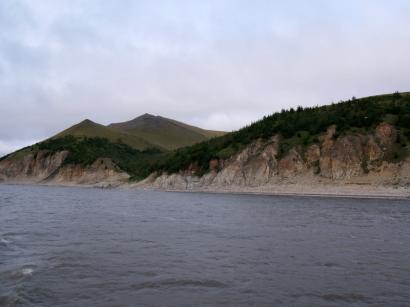 Правый берег Лены вблизи острова Тит-Ары. Лиственница Каяндера на северном пределе своего распространения(2)
