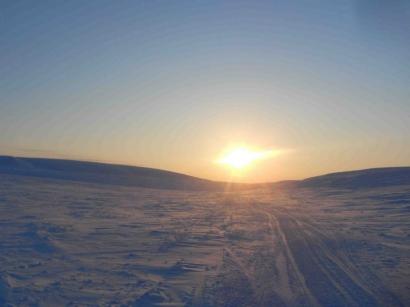Дорога домой_1