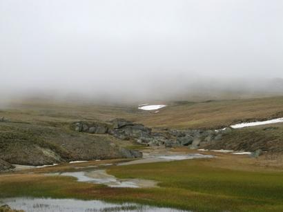 Приток реки Малахатин. Туман