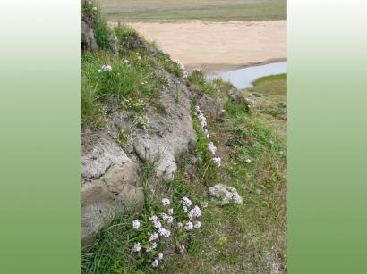 Излучина реки Малахатин