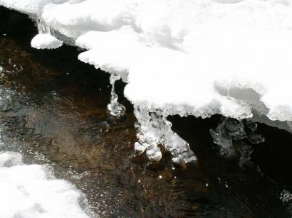 Ручей – приток реки Яны