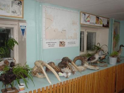 Палеонтологическая коллекция